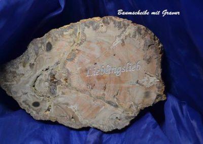 Holz-gravur--Baumscheibe-mit-Gravur