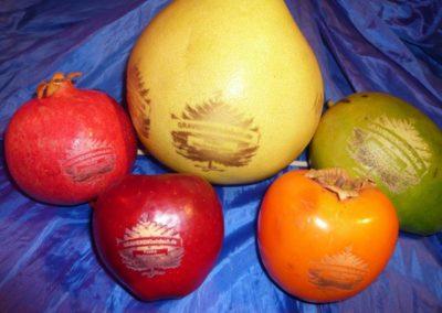 Gelaserte Obst.