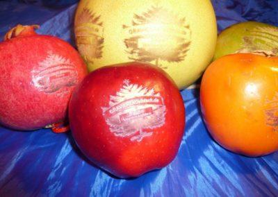 Obst mit Ihre Logo